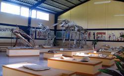 Museo-de-Estanzuela