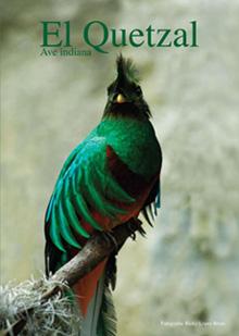 """Libro """"El Quetzal, Ave Indiana"""" por Ricky López Bruni - A la venta en www.RickyLopezBruni.com"""