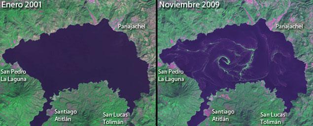Lago de Atitlán - foto de la NASA mostrando la contaminación