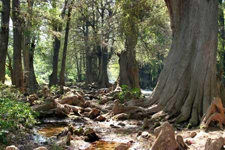 Río en Santa Ana Huista, Huehuetenango.