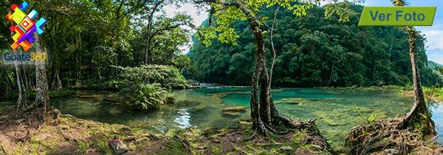 Semuc Champey tiene piscinas naturales en Alta Verapaz, Guatemala. Por Lanquín.