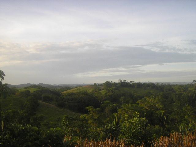 paisajes de guatemala. Paisaje de la selva de Petén